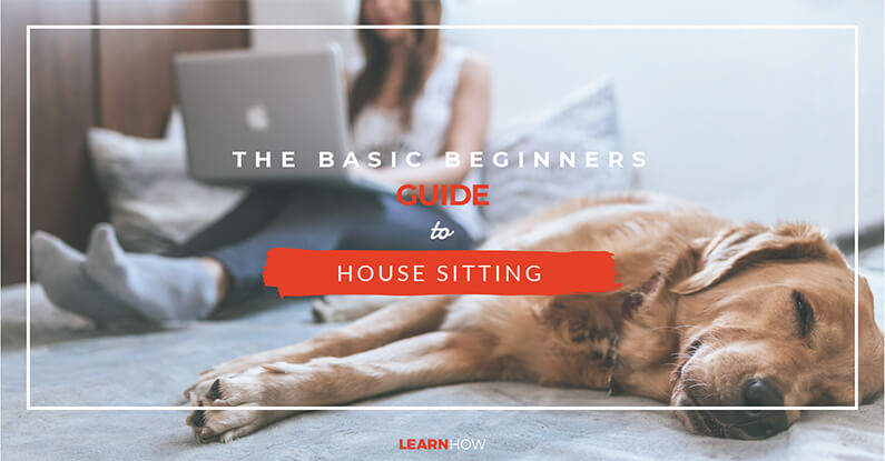 The Basic Guide To House Sitting